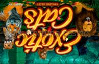Онлайн казино play fortuna актуальное зеркало
